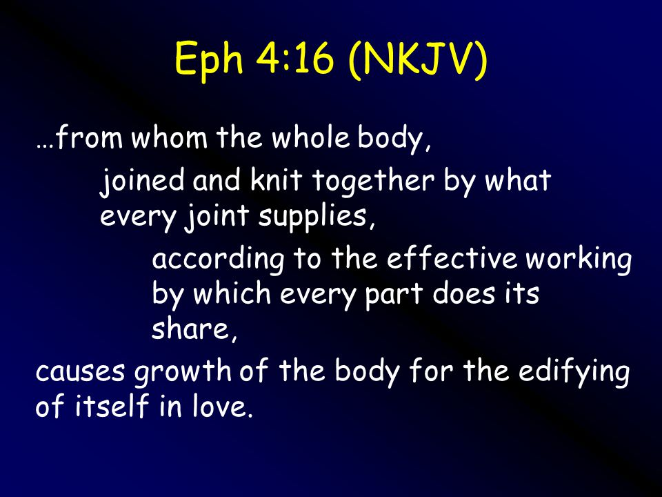 Growing up into Him7 Eph 4:16 (NKJV) …from whom the whole body, joined and knit together by what every joint supplies, according to the effective working by which every part does its share, causes growth of the body for the edifying of itself in love.