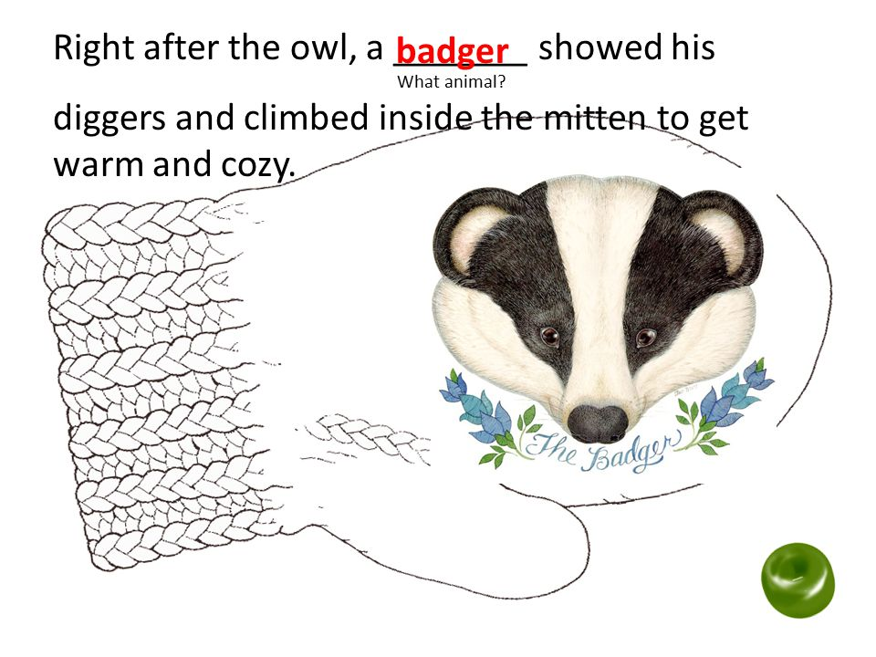 Right after the owl, a _______ showed his What animal? diggers and climbed inside the mitten to get warm and cozy. badger