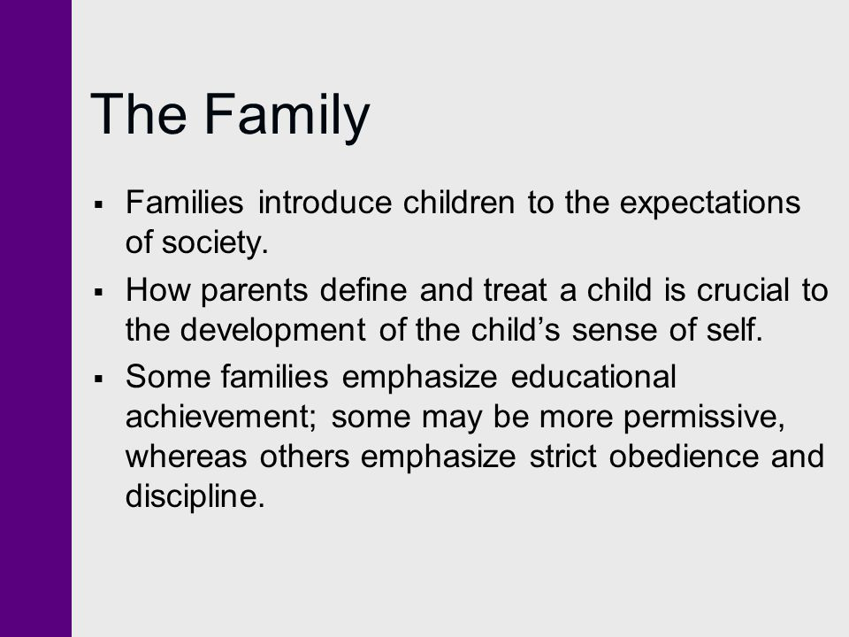 The Family  Families introduce children to the expectations of society.  How parents define and treat a child is crucial to the development of the c