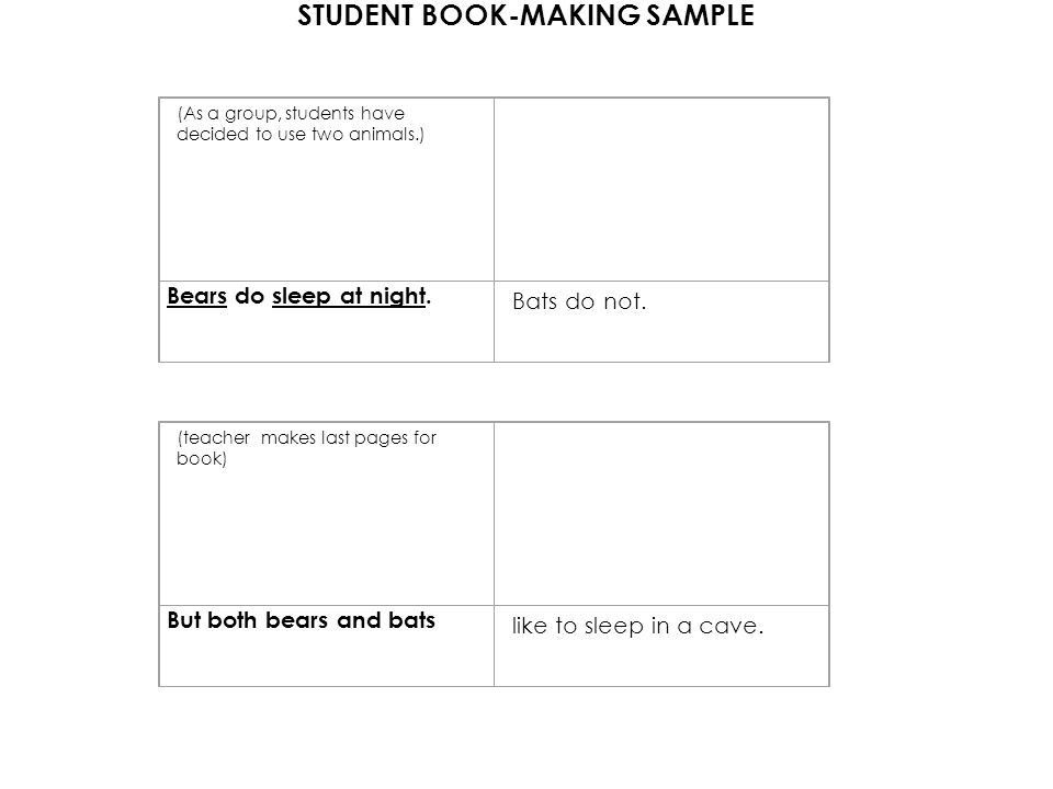 STUDENT BOOK-MAKING SAMPLE (As a group, students have decided to use two animals.) Bears do sleep at night.