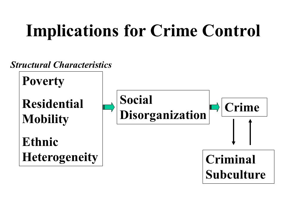 Implications for Crime Control Poverty Residential Mobility Ethnic Heterogeneity Social Disorganization Crime Criminal Subculture Structural Characteristics