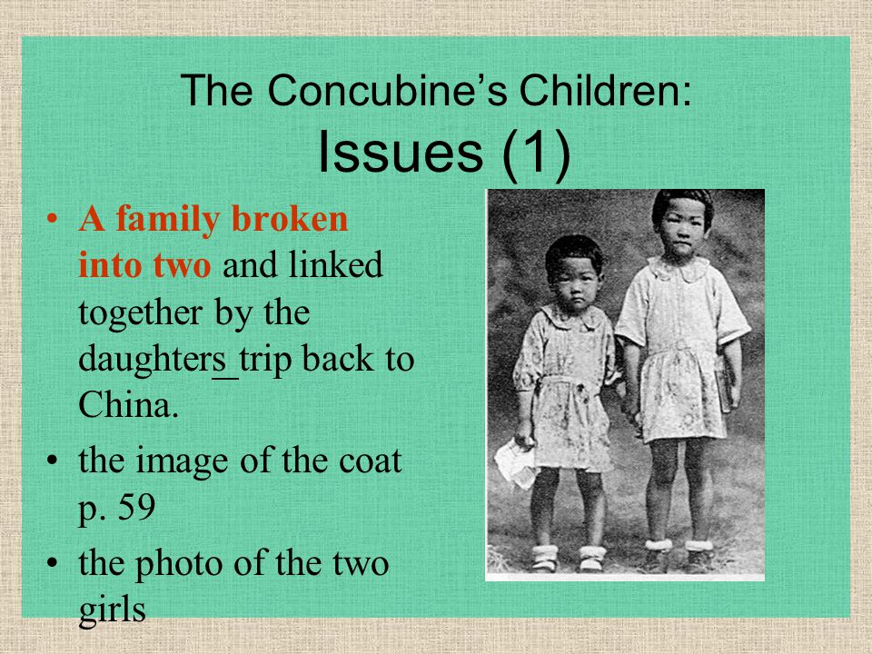 The Concubine's Children: Issues (1) A family broken into two and linked together by the daughters trip back to China. the image of the coat p. 59 the