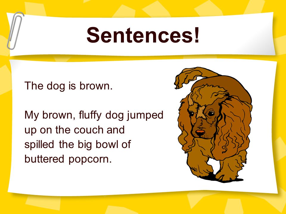 Sentences. The dog is brown.