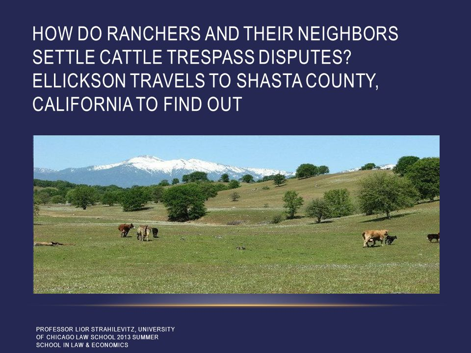 HOW DO RANCHERS AND THEIR NEIGHBORS SETTLE CATTLE TRESPASS DISPUTES? ELLICKSON TRAVELS TO SHASTA COUNTY, CALIFORNIA TO FIND OUT PROFESSOR LIOR STRAHIL