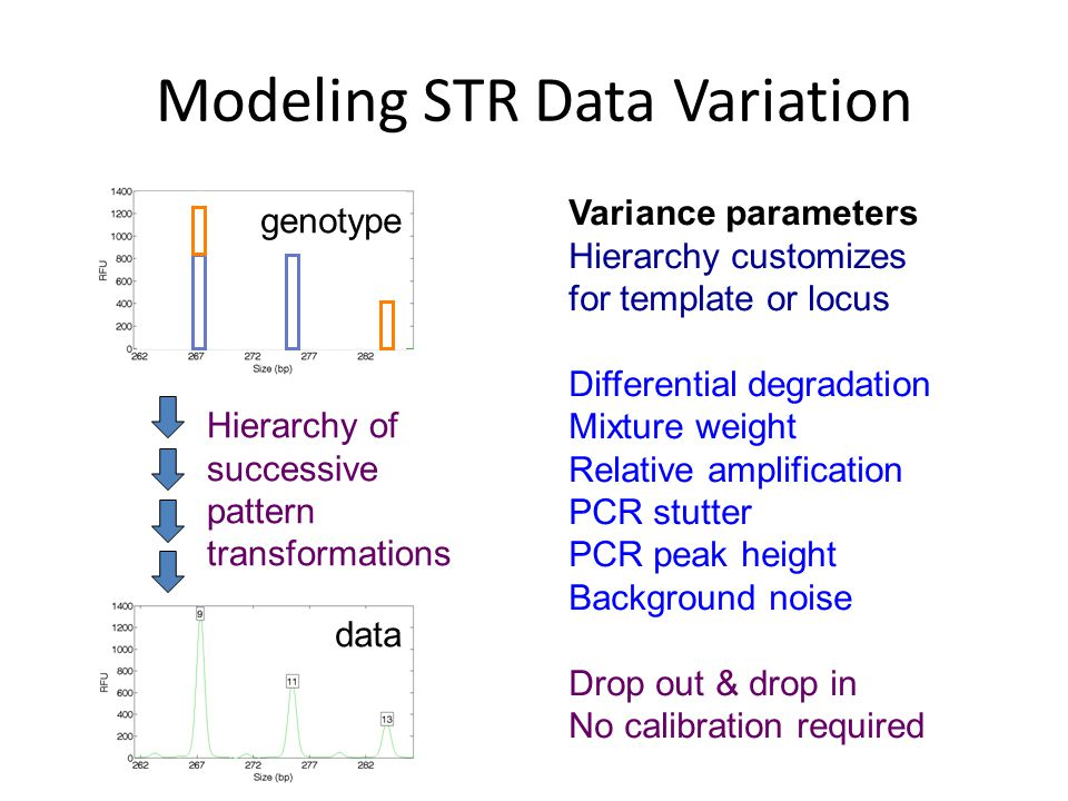 Modeling STR Data Variation Hierarchy of successive pattern transformations Variance parameters Hierarchy customizes for template or locus Differential degradation Mixture weight Relative amplification PCR stutter PCR peak height Background noise Drop out & drop in No calibration required genotype data