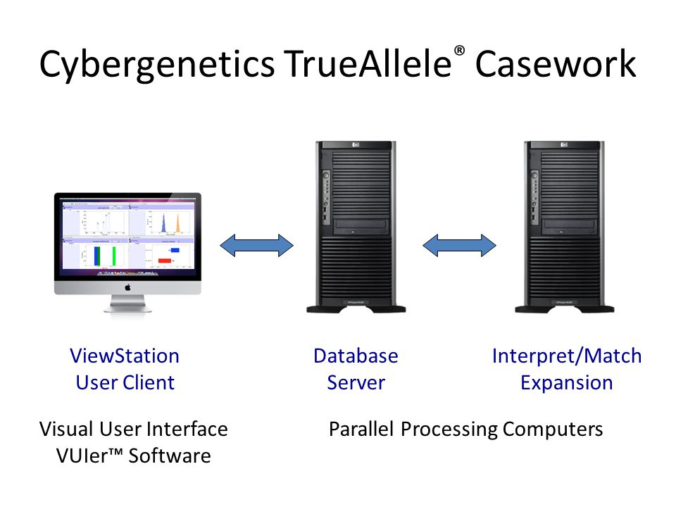 Cybergenetics TrueAllele ® Casework ViewStation User Client Database Server Interpret/Match Expansion Visual User Interface VUIer™ Software Parallel Processing Computers