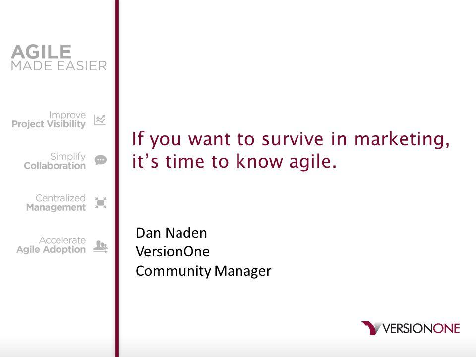 © 2012 VersionOne, Inc. 12 Long req docs Siloed teamsUnclear customer input