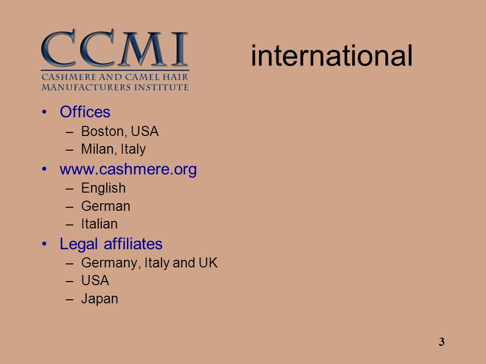 3 international Offices –Boston, USA –Milan, Italy www.cashmere.org –English –German –Italian Legal affiliates –Germany, Italy and UK –USA –Japan
