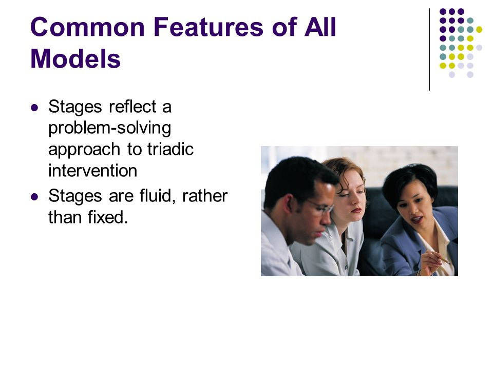 Common Features of All Models Stages reflect a problem-solving approach to triadic intervention Stages are fluid, rather than fixed.