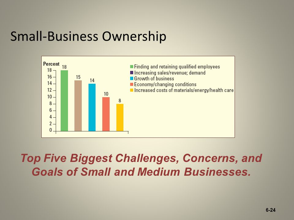6-24 Small-Business Ownership Top Five Biggest Challenges, Concerns, and Goals of Small and Medium Businesses.