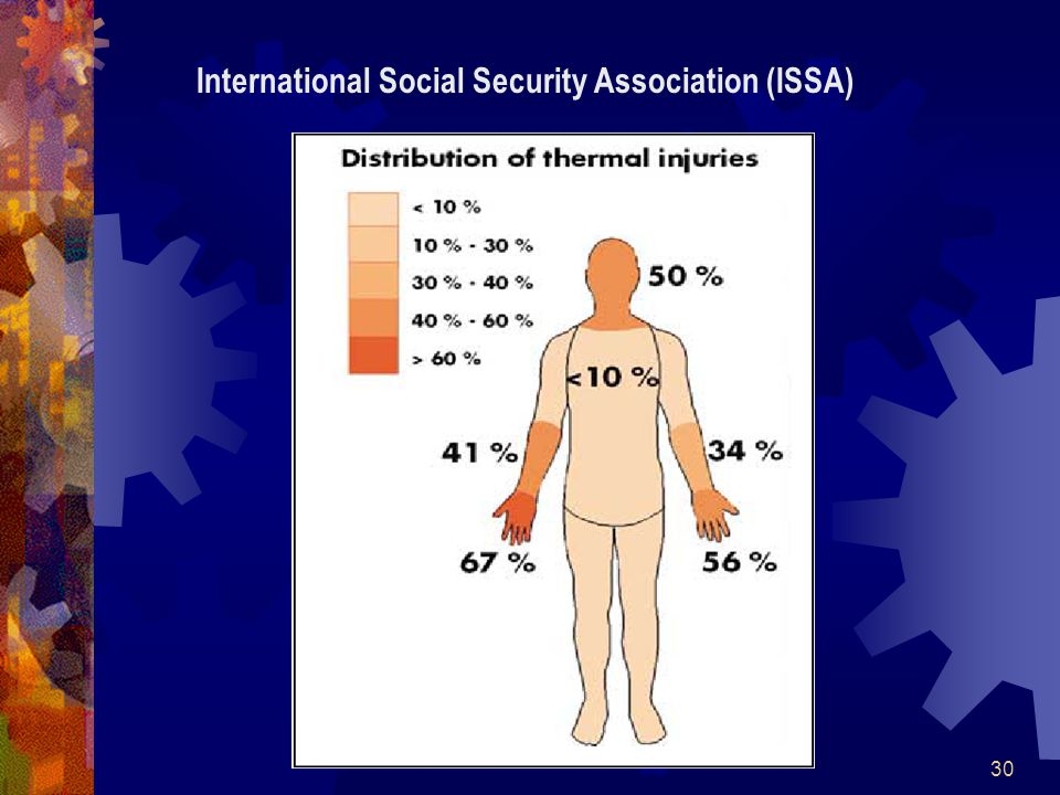30 International Social Security Association (ISSA)