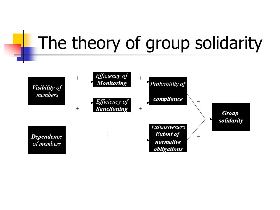 The theory of group solidarity Visibility of members Dependence of members Efficiency of Monitoring Efficiency of Sanctioning Extensiveness Extent of normative obligations Probability of compliance Group solidarity + + ++ + + +