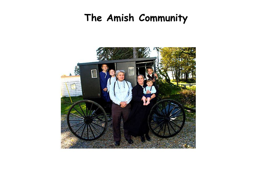 The Amish Community