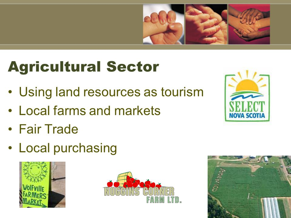 Agricultural Sector Using land resources as tourism Local farms and markets Fair Trade Local purchasing