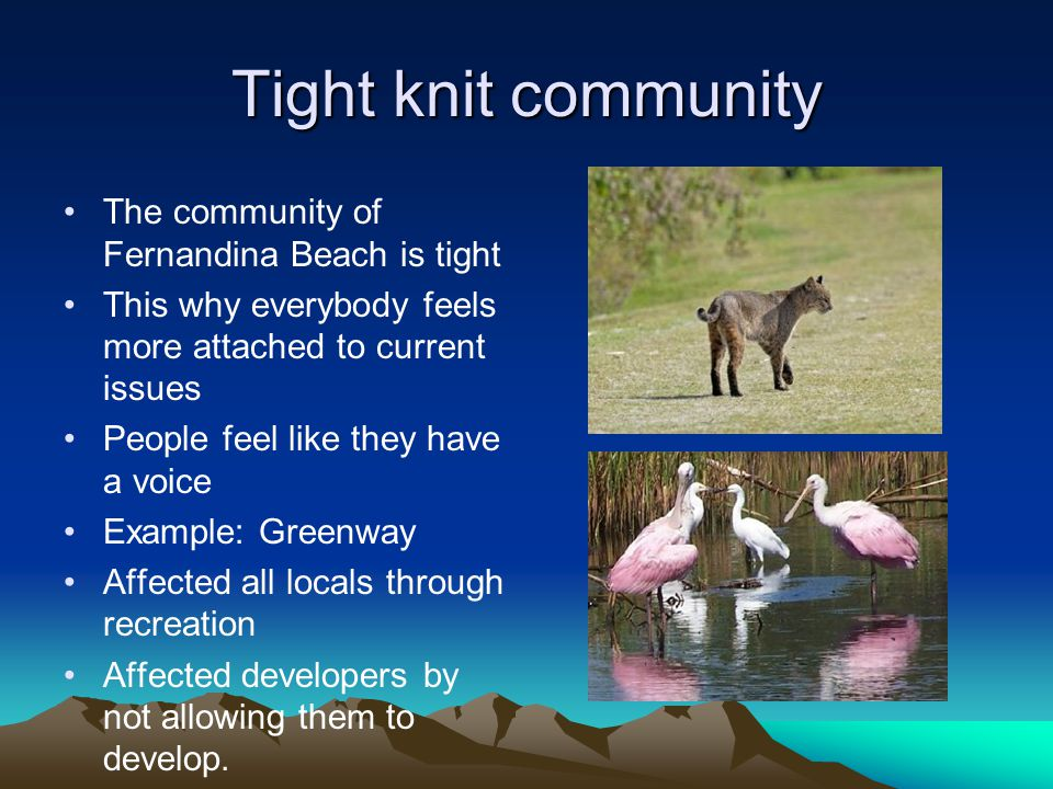 Tight knit community The community of Fernandina Beach is tight This why everybody feels more attached to current issues People feel like they have a voice Example: Greenway Affected all locals through recreation Affected developers by not allowing them to develop.