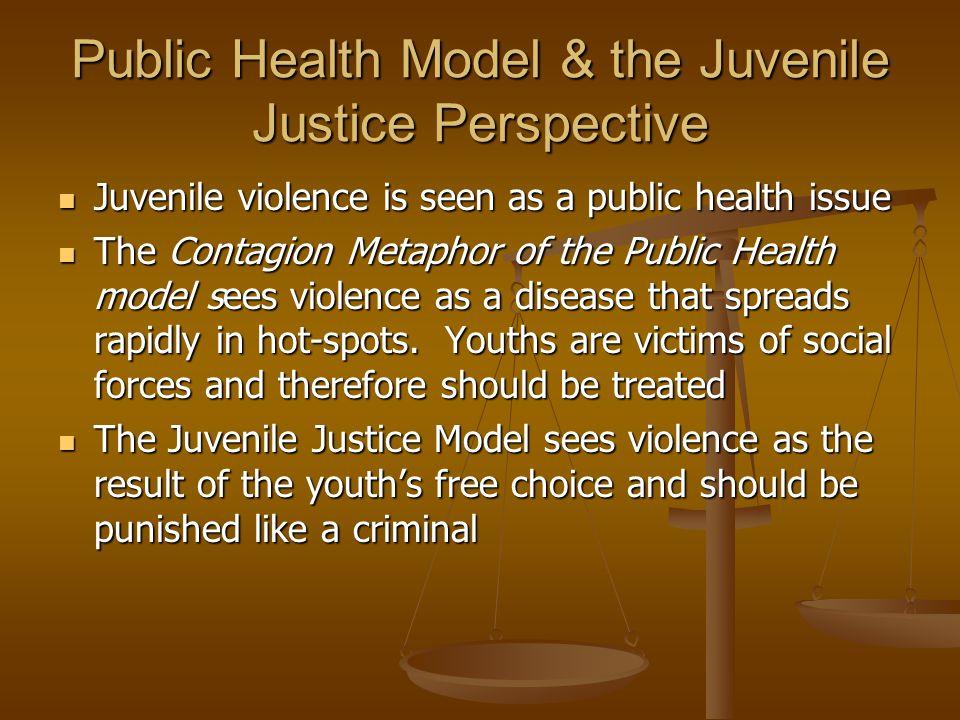 Public Health Model & the Juvenile Justice Perspective Juvenile violence is seen as a public health issue Juvenile violence is seen as a public health
