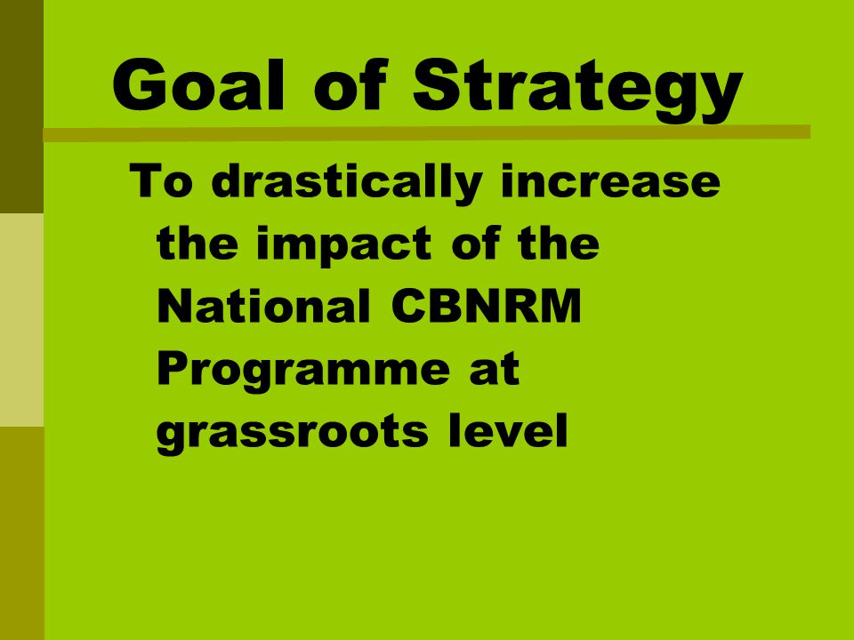 Goal of Strategy To drastically increase the impact of the National CBNRM Programme at grassroots level