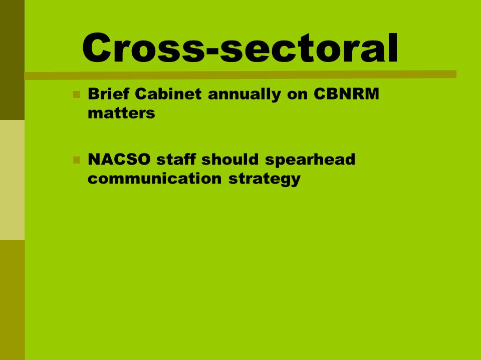 Cross-sectoral Brief Cabinet annually on CBNRM matters NACSO staff should spearhead communication strategy
