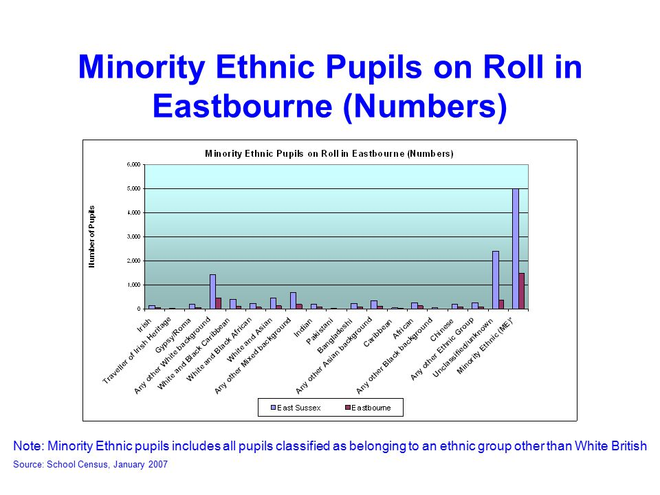 Minority Ethnic Pupils on Roll in Eastbourne (Numbers) Note: Minority Ethnic pupils includes all pupils classified as belonging to an ethnic group other than White British Source: School Census, January 2007