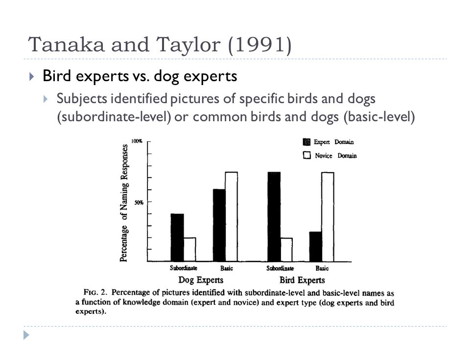 Tanaka and Taylor (1991)  Bird experts vs. dog experts  Subjects identified pictures of specific birds and dogs (subordinate-level) or common birds