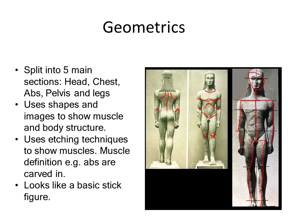 Geometrics Split into 5 main sections: Head, Chest, Abs, Pelvis and legs Uses shapes and images to show muscle and body structure.
