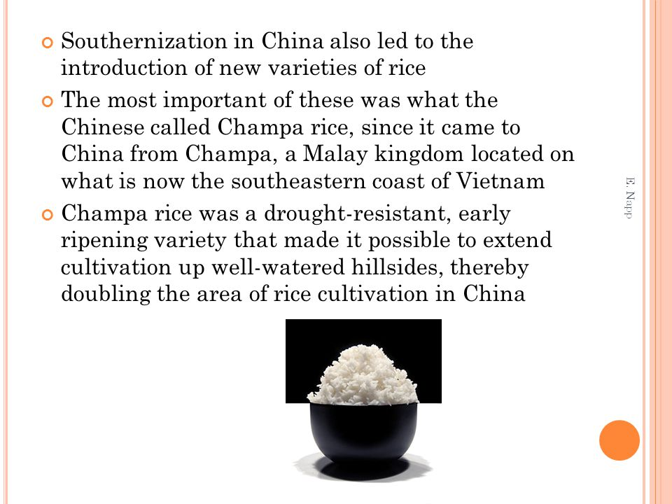 Southernization in China also led to the introduction of new varieties of rice The most important of these was what the Chinese called Champa rice, si