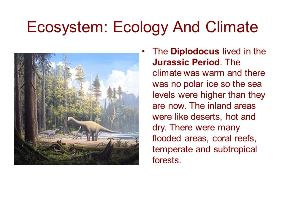 Ecosystem: Ecology And Climate The Diplodocus lived in the Jurassic Period.