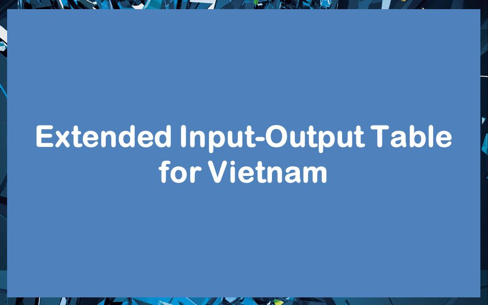 Extended Input-Output Table for Vietnam