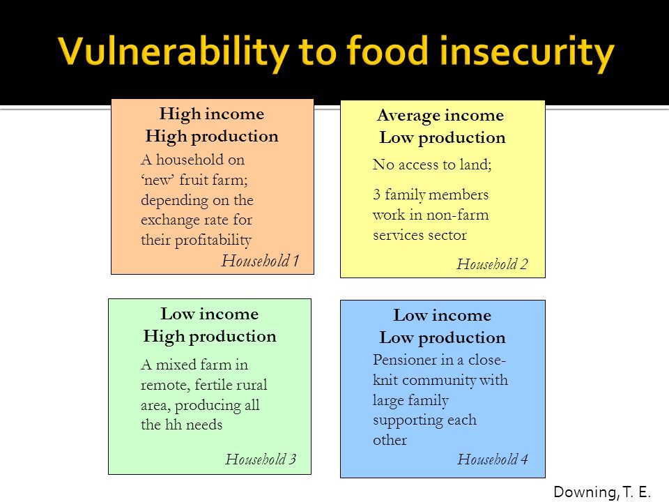 Average income Low production No access to land; 3 family members work in non-farm services sector High income High production Low income Low producti