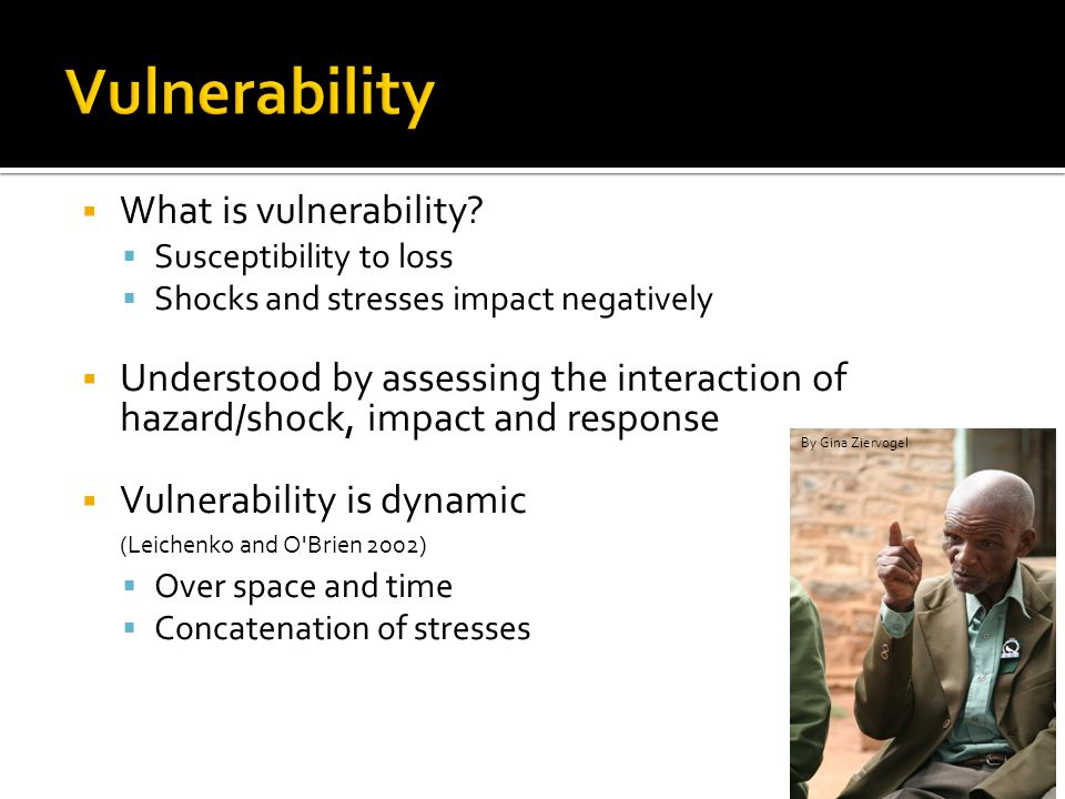 For Vulnerability Research