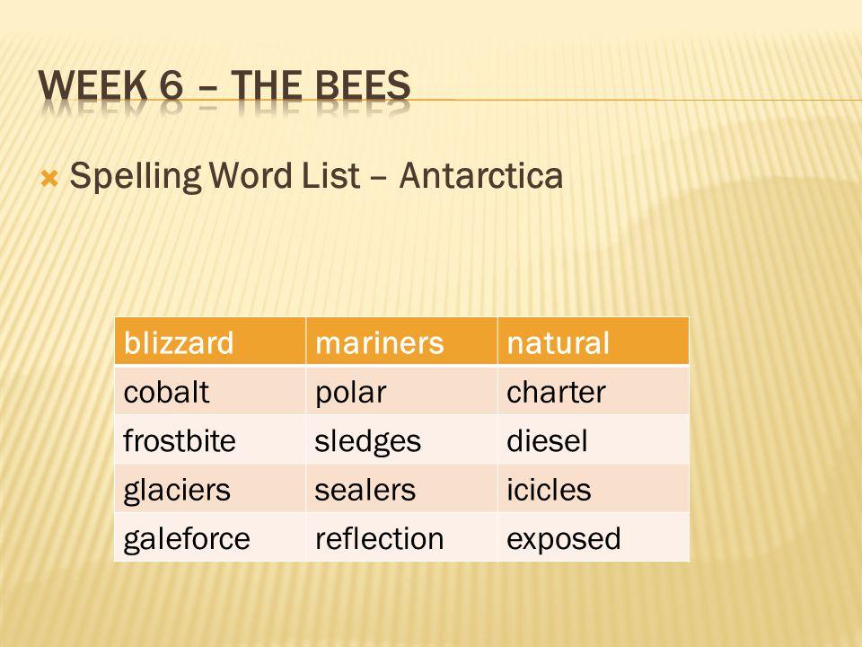  Spelling Word List – Antarctica blizzardmarinersnatural cobaltpolarcharter frostbitesledgesdiesel glacierssealersicicles galeforcereflectionexposed