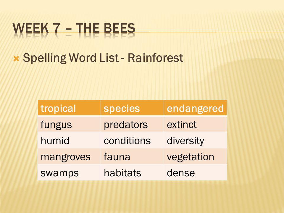  Spelling Word List - Rainforest tropicalspeciesendangered funguspredatorsextinct humidconditionsdiversity mangrovesfaunavegetation swampshabitatsdense