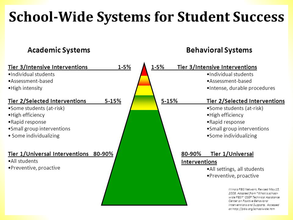 Tier 3/Intensive Interventions 1-5% Individual students Assessment-based High intensity 1-5%Tier 3/Intensive Interventions Individual students Assessm
