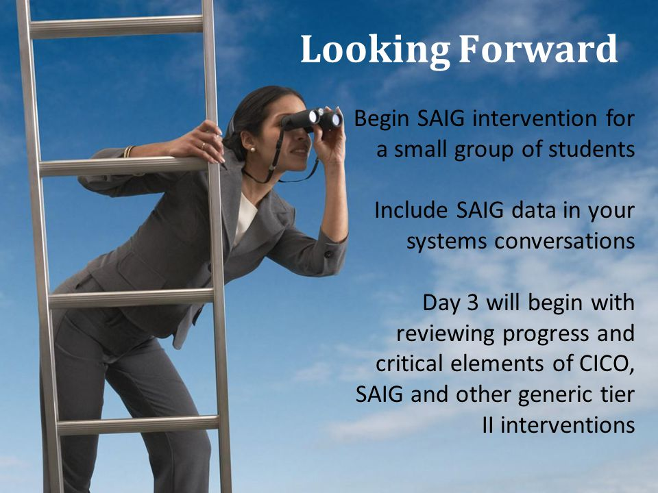 Looking Forward Begin SAIG intervention for a small group of students Include SAIG data in your systems conversations Day 3 will begin with reviewing