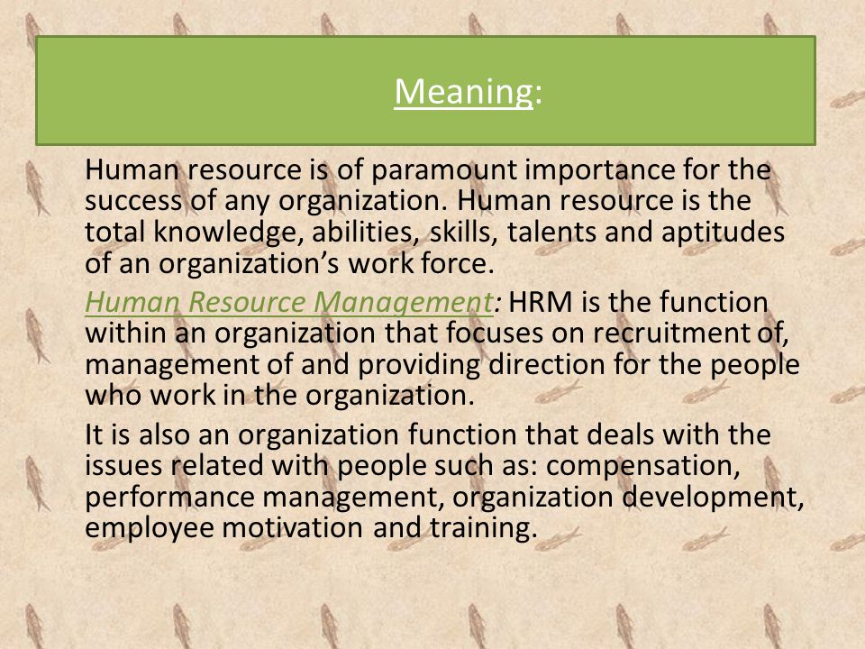 Meaning: Human resource is of paramount importance for the success of any organization. Human resource is the total knowledge, abilities, skills, tale