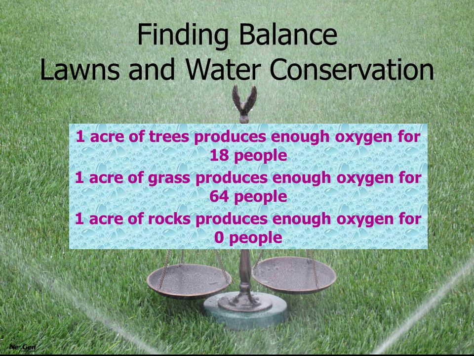 Finding Balance Lawns and Water Conservation 1 acre of trees produces enough oxygen for 18 people 1 acre of grass produces enough oxygen for 64 people 1 acre of rocks produces enough oxygen for 0 people
