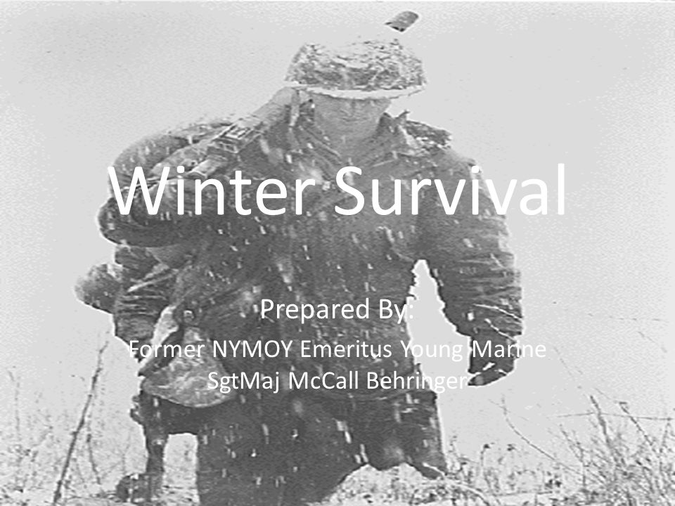 Winter Survival Prepared By: Former NYMOY Emeritus Young Marine SgtMaj McCall Behringer