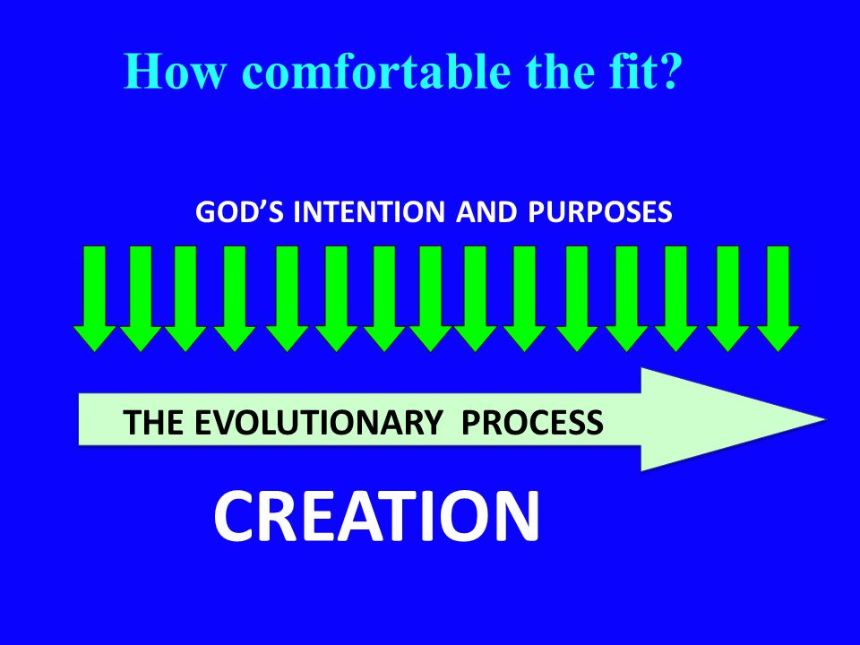 How comfortable the fit? CREATION GOD'S INTENTION AND PURPOSES THE EVOLUTIONARY PROCESS