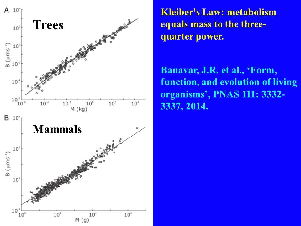 Trees Mammals Banavar, J.R.