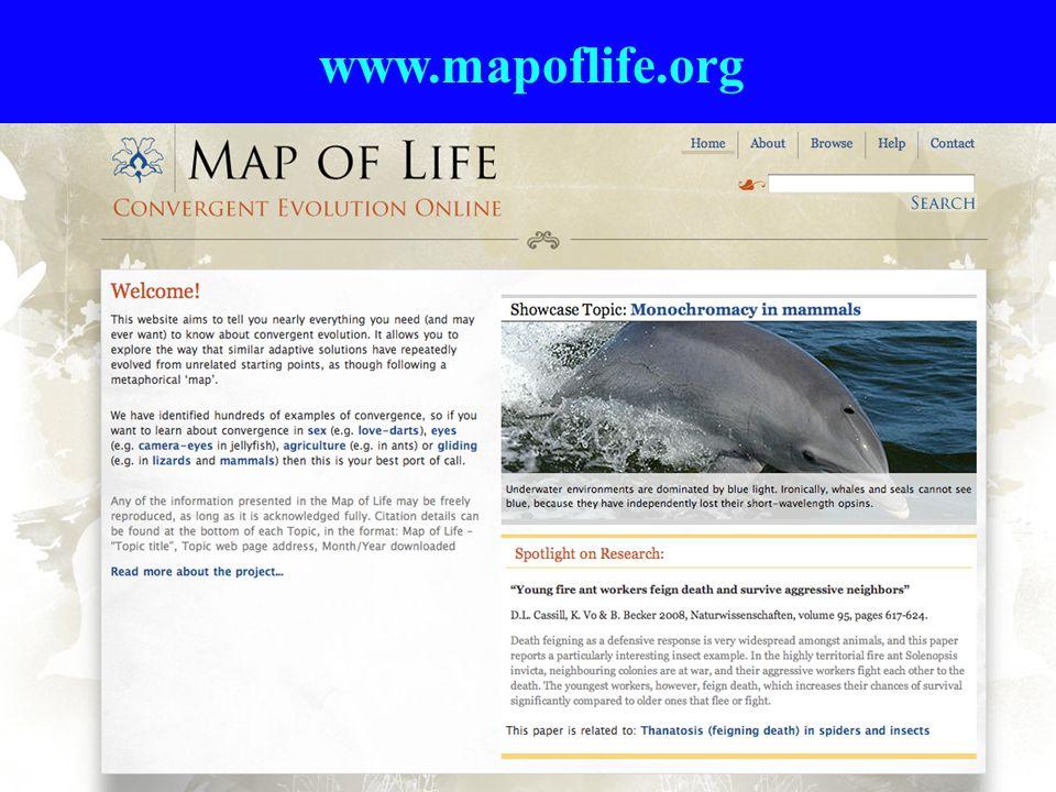 www.mapoflife.org