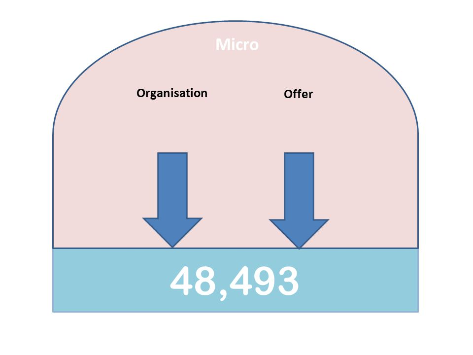 48,493 Micro Organisation Offer