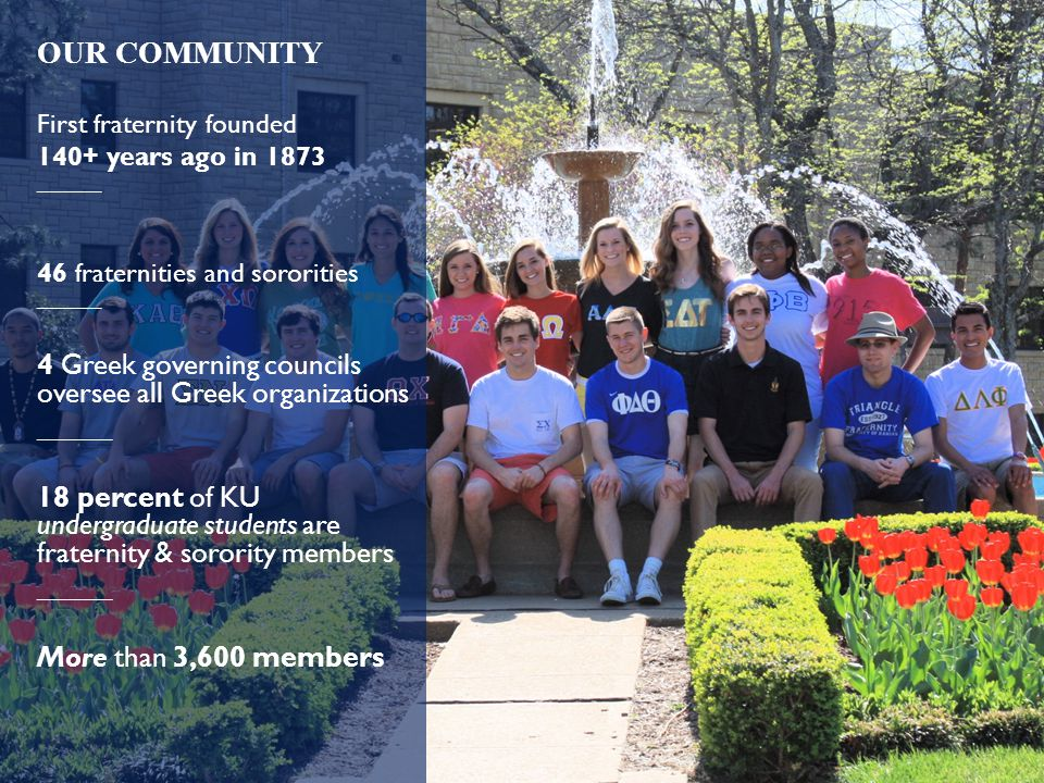 OUR COMMUNITY First fraternity founded 140+ years ago in 1873 _____ 46 fraternities and sororities _____ 4 Greek governing councils oversee all Greek organizations _____ 18 percent of KU undergraduate students are fraternity & sorority members _____ More than 3,600 members