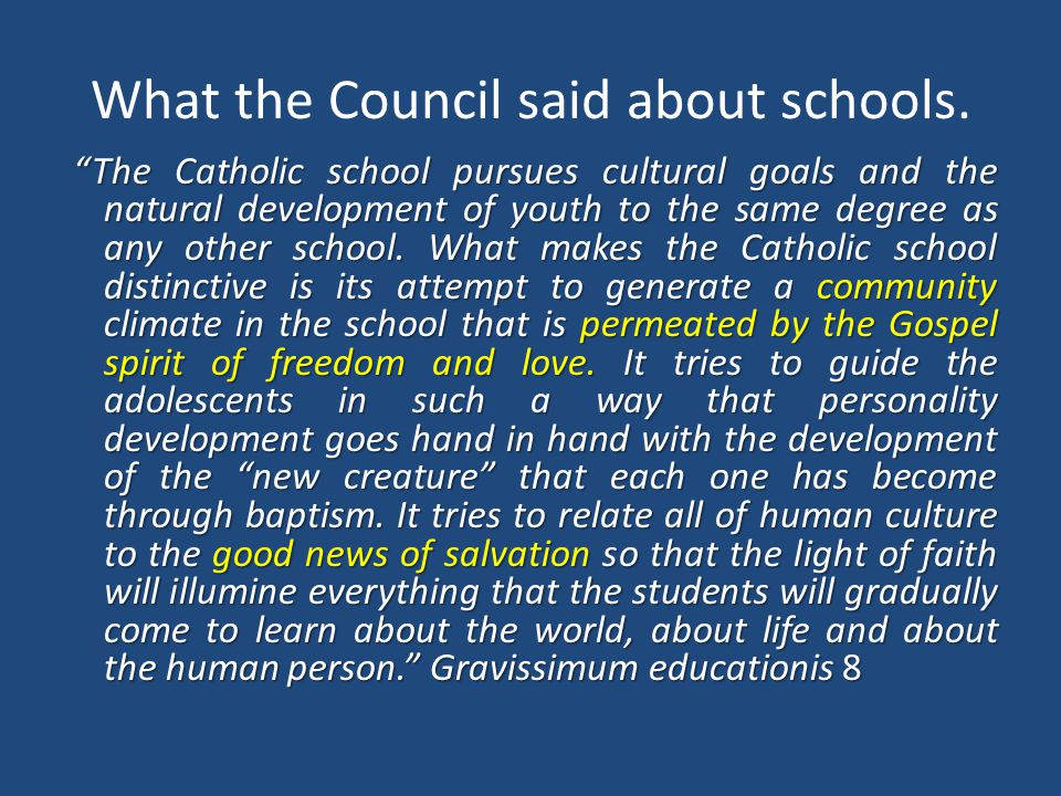 What the Council said about schools.