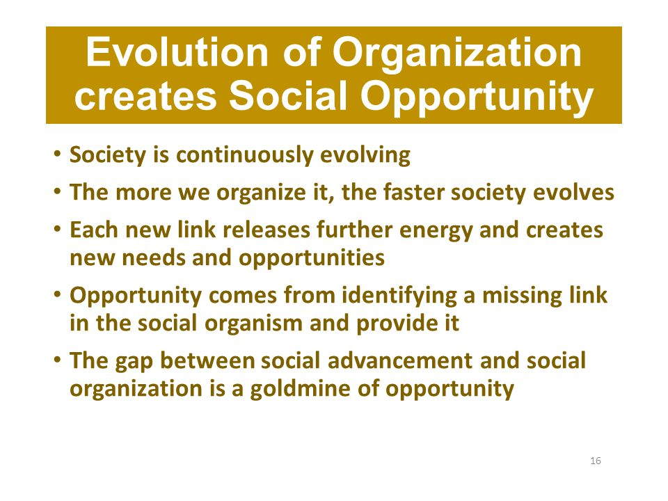 Evolution of Organization creates Social Opportunity Society is continuously evolving The more we organize it, the faster society evolves Each new link releases further energy and creates new needs and opportunities Opportunity comes from identifying a missing link in the social organism and provide it The gap between social advancement and social organization is a goldmine of opportunity 16