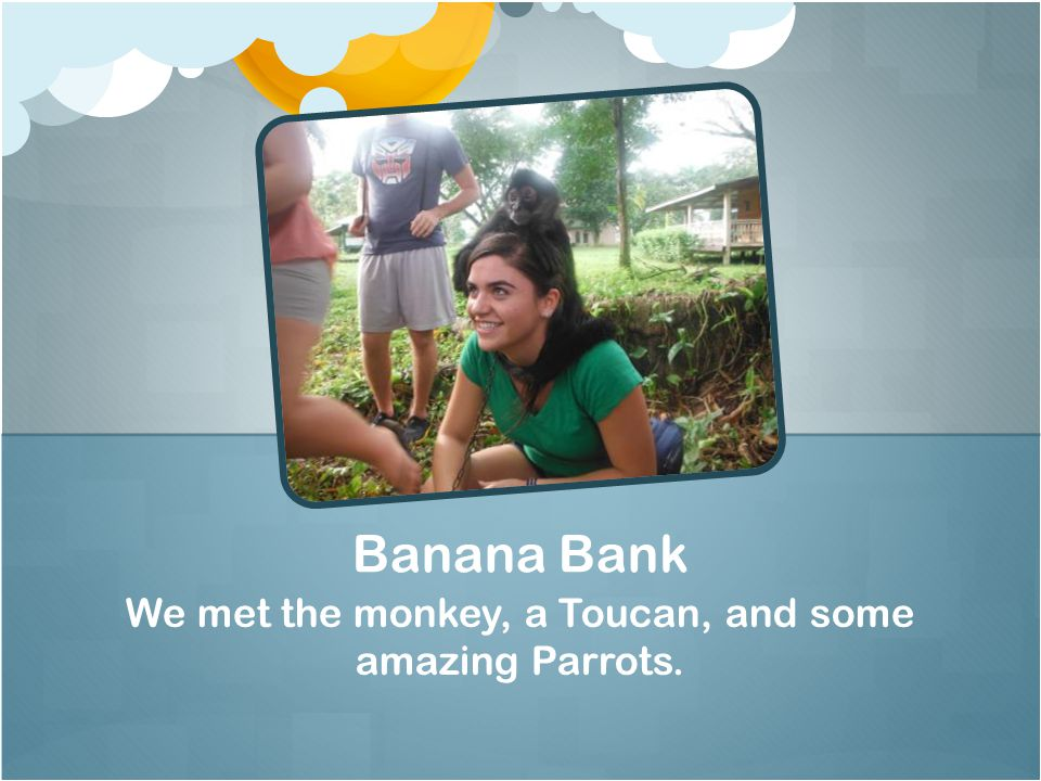 We met the monkey, a Toucan, and some amazing Parrots. Banana Bank