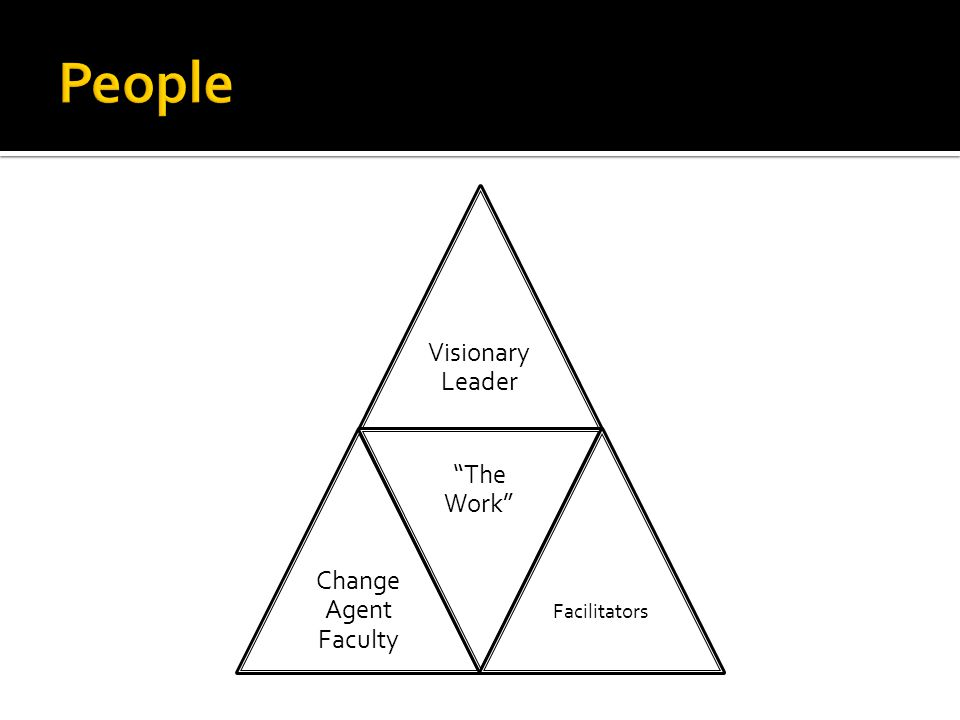 Visionary Leader Change Agent Faculty The Work Facilitators