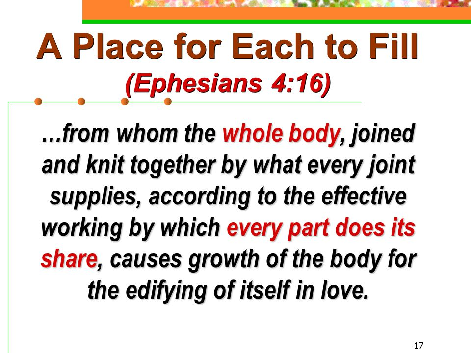 17 A Place for Each to Fill (Ephesians 4:16) …from whom the whole body, joined and knit together by what every joint supplies, according to the effective working by which every part does its share, causes growth of the body for the edifying of itself in love.