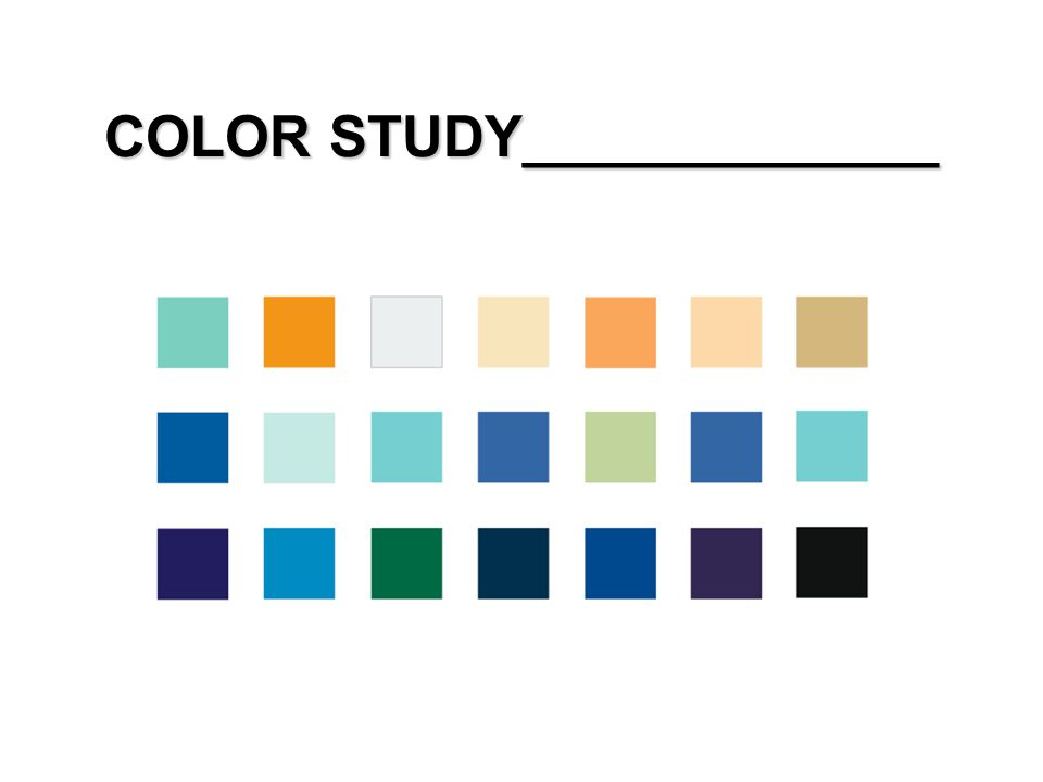 COLOR STUDY_____________