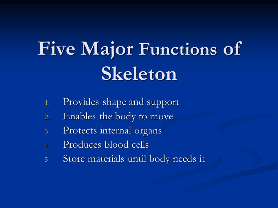 Five Major Functions of Skeleton 1. Provides shape and support 2. Enables the body to move 3. Protects internal organs 4. Produces blood cells 5. Stor