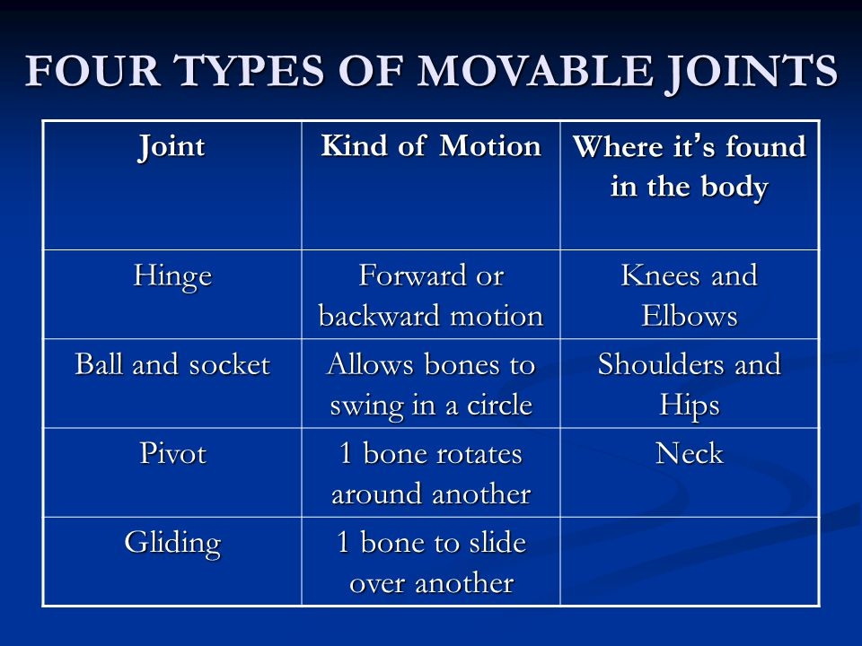 FOUR TYPES OF MOVABLE JOINTS Joint Kind of Motion Where it's found in the body Hinge Forward or backward motion Knees and Elbows Ball and socket Allow